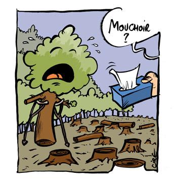 Mouchoir-deforestation